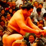 相撲の妙義龍の高校や大学について!彼女や四股名の意味、由来は?