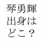 琴勇輝の出身地「小豆島」や家族について。医大生の弟や彼女の噂は?
