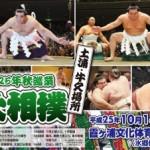 大相撲の地方巡業とは。チケットの買い方やその楽しみ方について