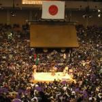 相撲人気が回復した理由とは?海外および若者からの人気も検証!